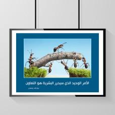 الأمر الوحيد الذي سيحرر البشرية هو التعاون